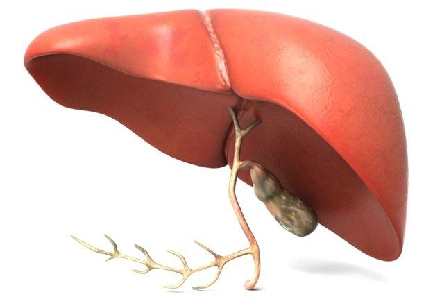 liver-hepetitis