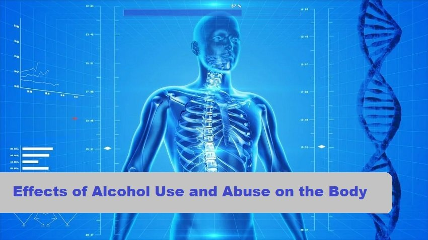 alcohol effects on the body article